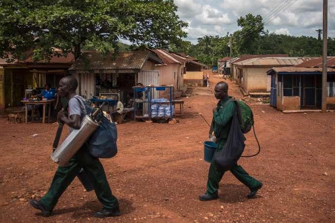 Workers of AGAMal (Anglogold Ashanti Malaria Ltd) walk